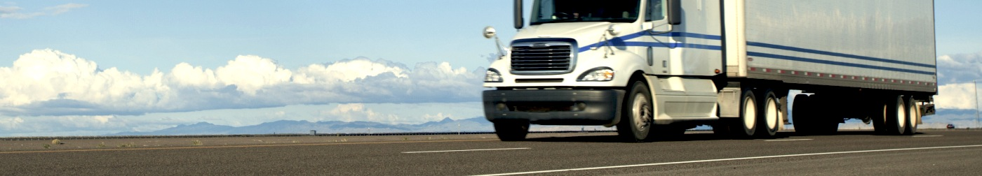 Interstate Standard or Urgent Freight Delivery Services from Sydney to Wagga